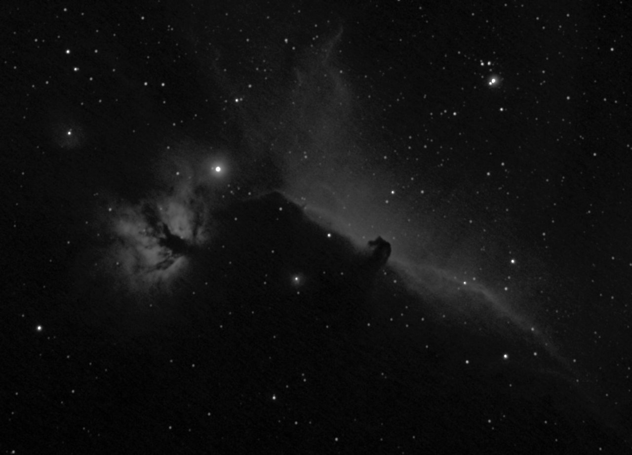 Flame and Horsehead Nebulae Ha