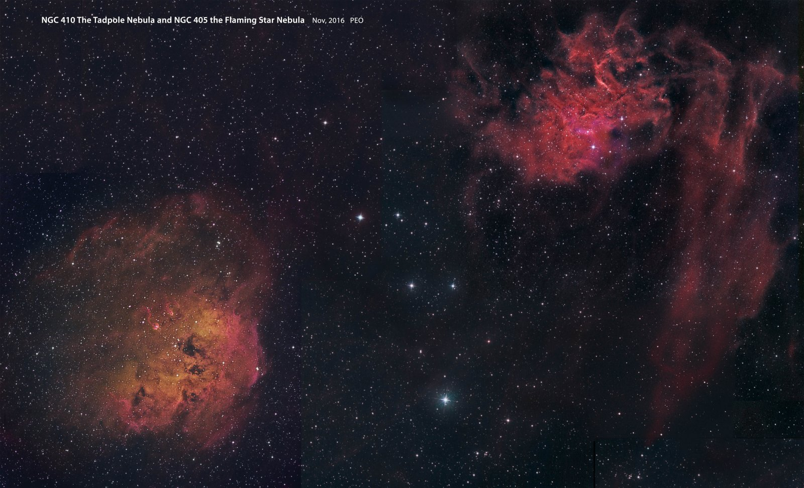 Tadpole and Flaming Star Nebulae