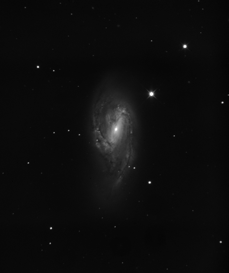 NGC6603