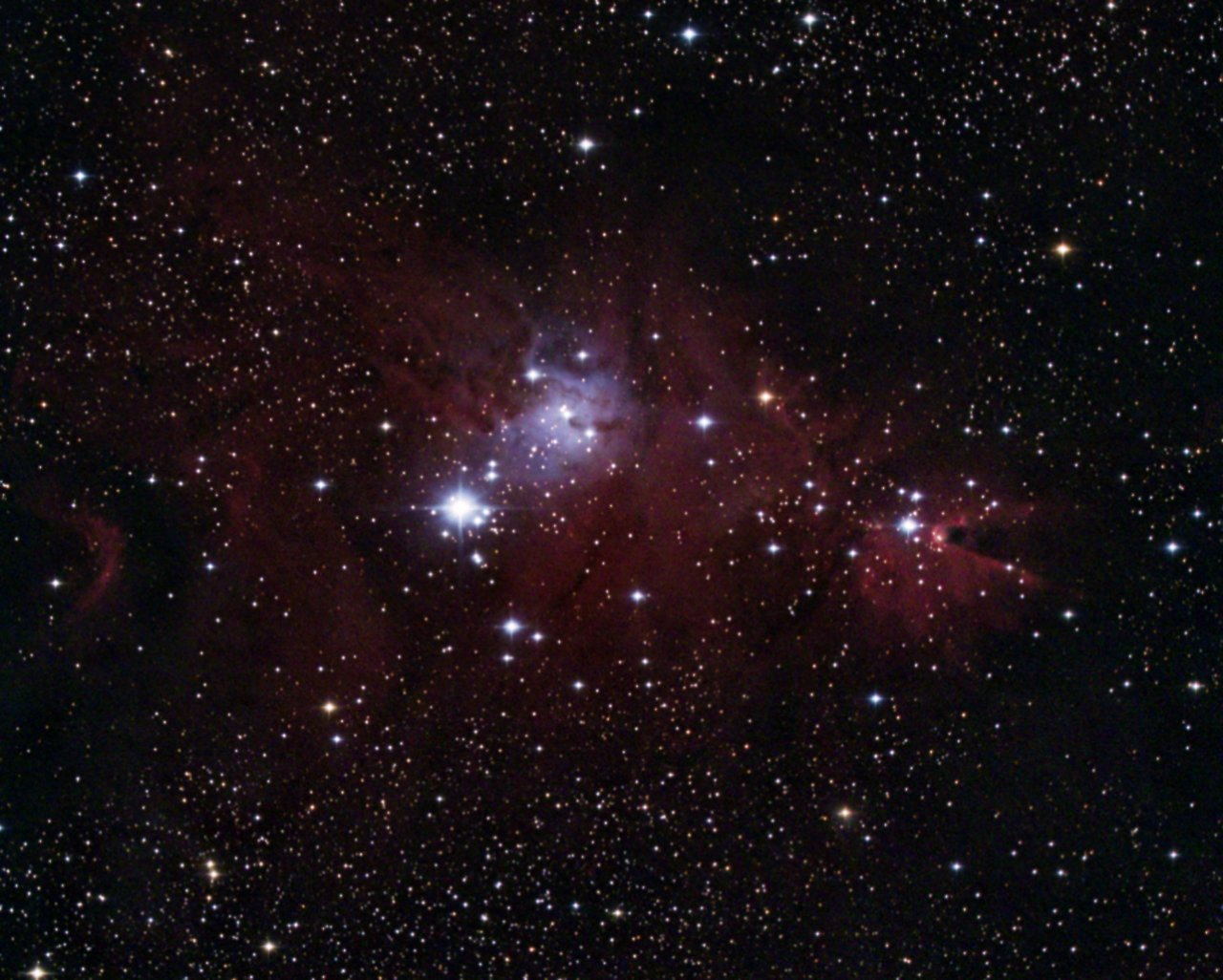 Cone and Christmas Tree Nebulae, NGC2264