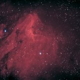 IC5070, the Pelican Nebula