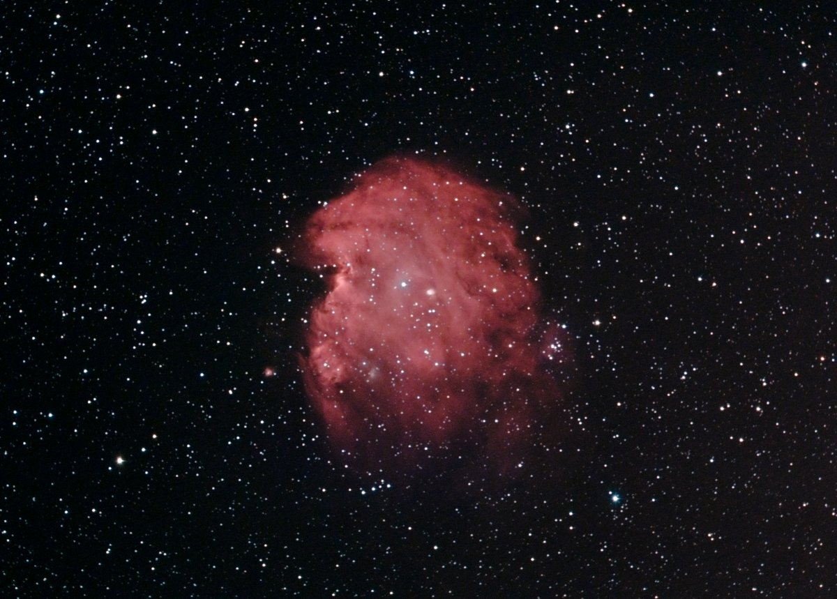 NGC2175, the Monkey Head Nebula