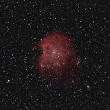 NGC2175, the Monkey Head Nebula, RGB