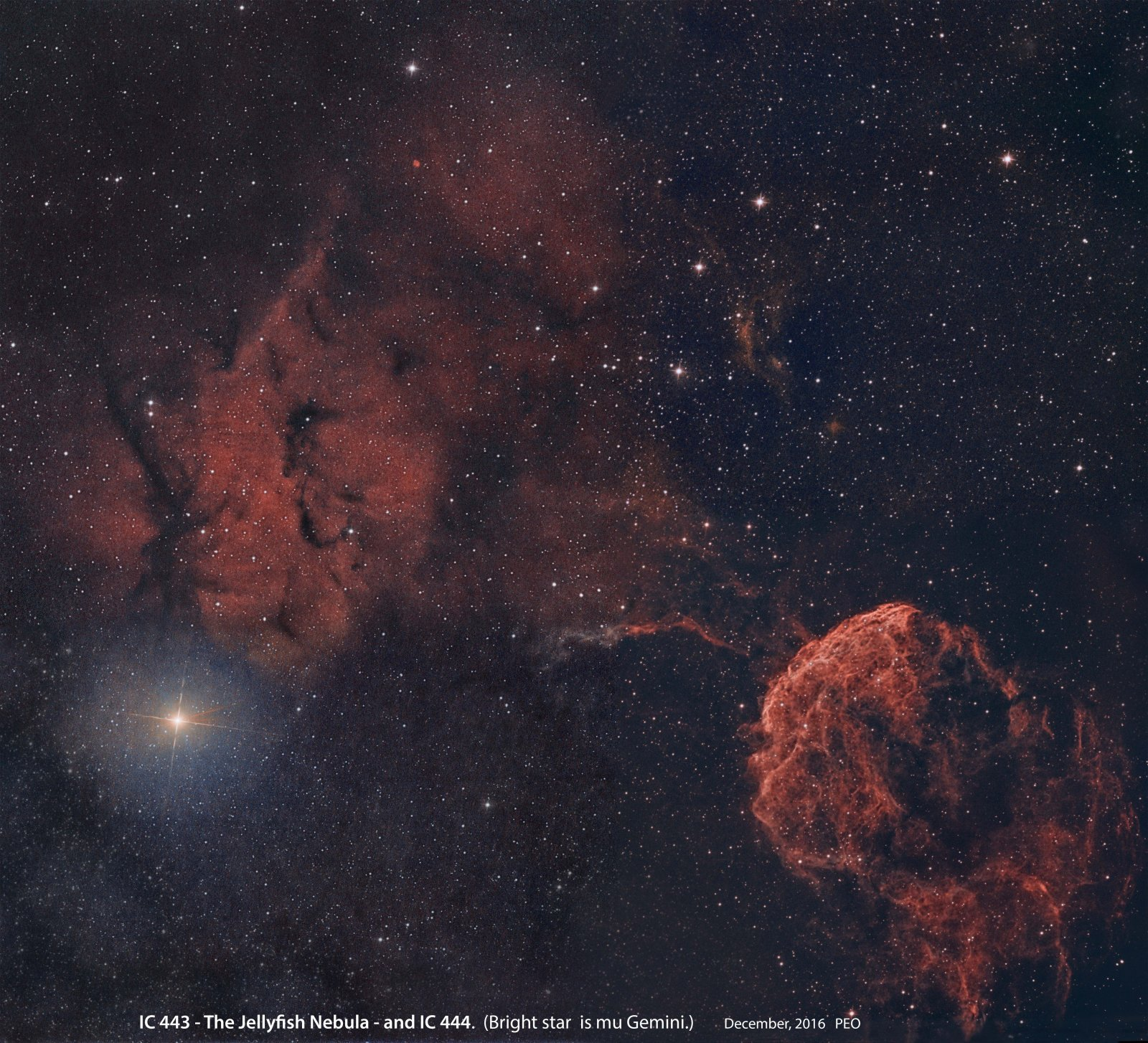 IC443 and 444