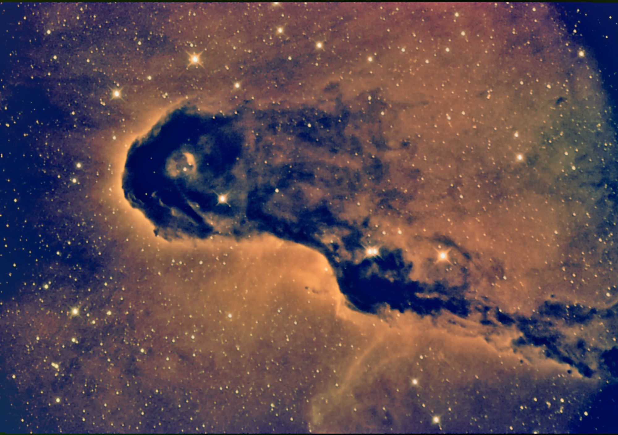 IC1396a-VdB142, Detail, the Elephant's Trunk