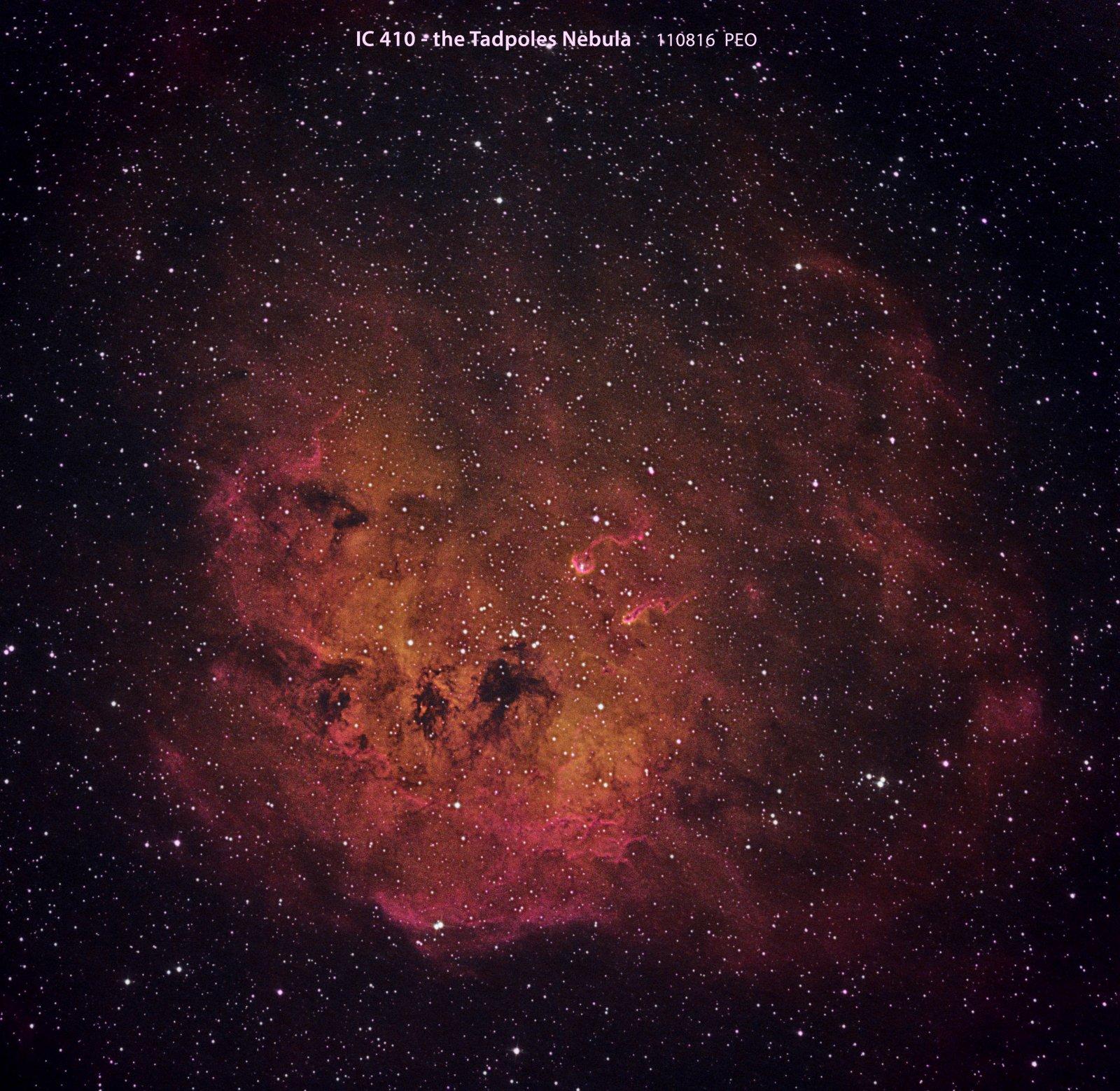 IC410, the Tadpoles Nebula