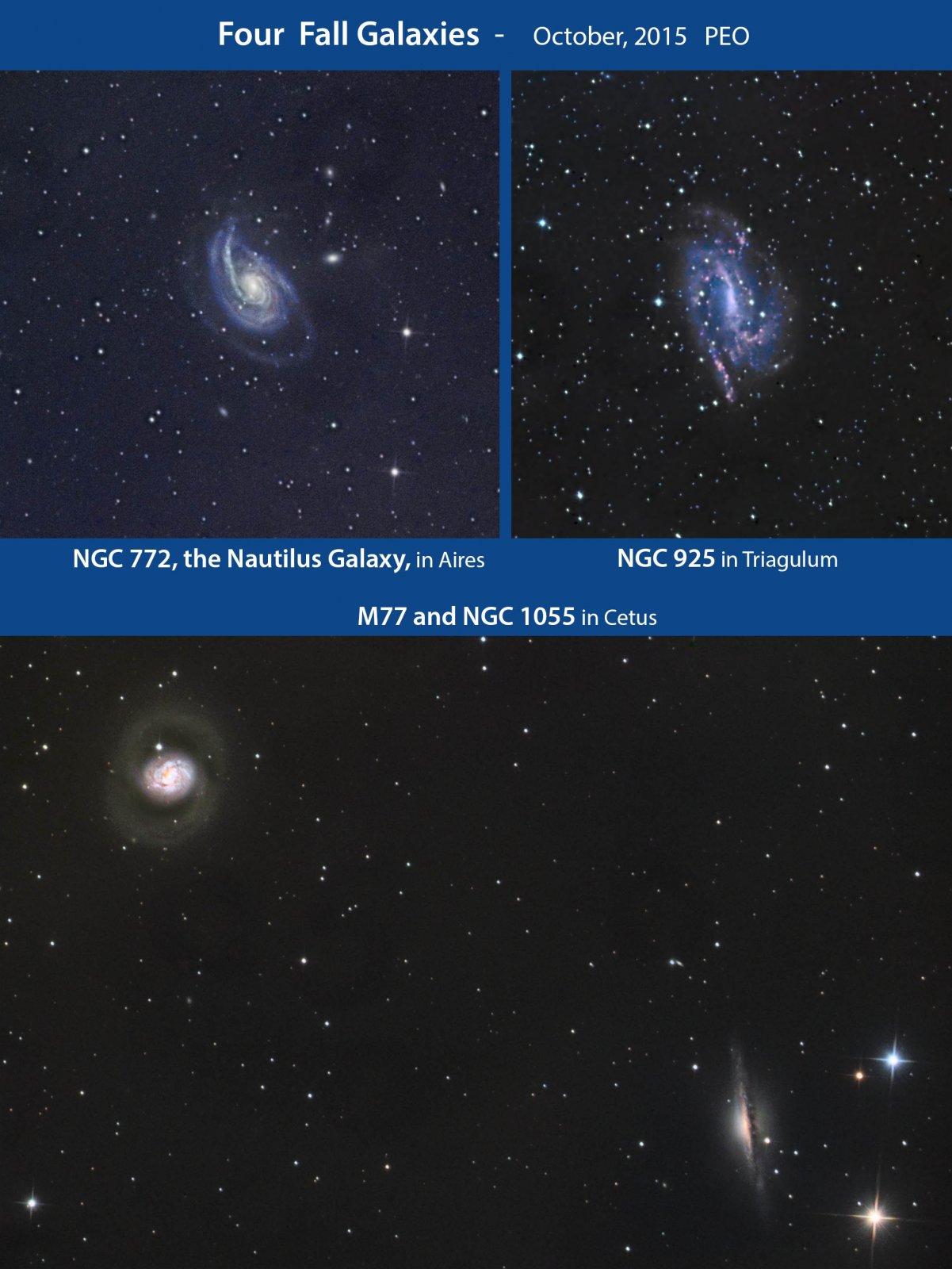 Fall Galaxies